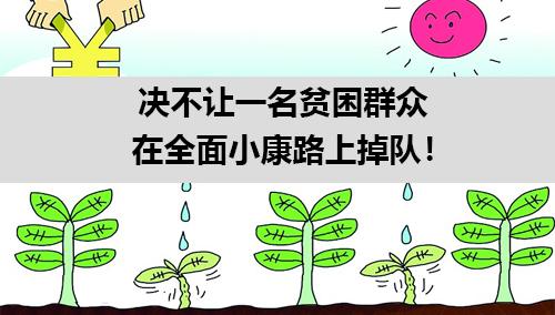 王东峰:决不让一名贫困群众在全面小康路上掉队!