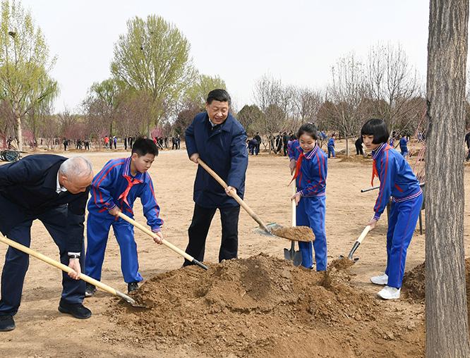 习近平在参加首都义务植树活动时强调:全国动员 全民动手 全